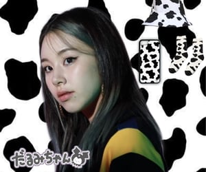 twice, cow print, and chaeyoung image