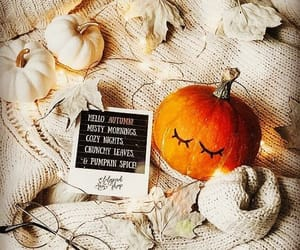 """Fall Cuddles🧡's Instagram post: """"Good morning pumpkin!!! 🧡🧡 Happy Friday  Everyone!!! ❤️❤️❤️ 🍂Photo from Pinterest #fall #fall… in 2020 