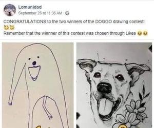 derp, humor, and joke image