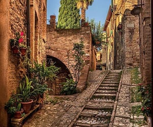 buildings, italy, and nature image