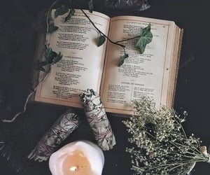 witch, pagan, and witchcraft image