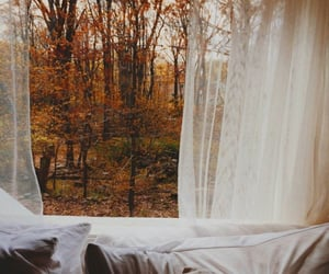 article, fall, and morning routine image