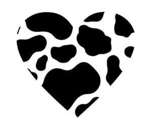 cow and heart image