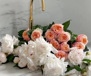 flowers, rose, and peonies image