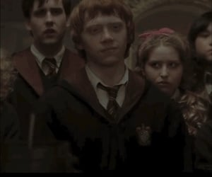 potter, ronweasley, and harry image