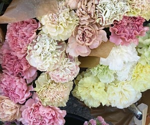 colours, flowers, and blush tones image