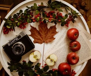 autumn, food, and autumn style image