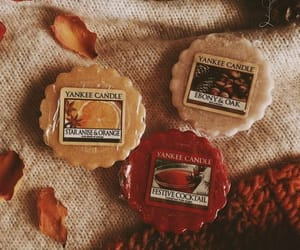 fall, autumn, and food image