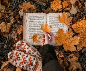 autumn, leaves, and book image