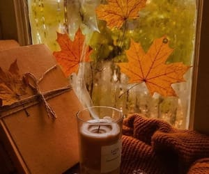 autumn, fall, and autumn vibes image