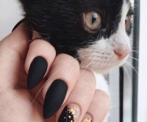 girly, nail art, and cat image