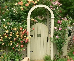 life, country, and door image