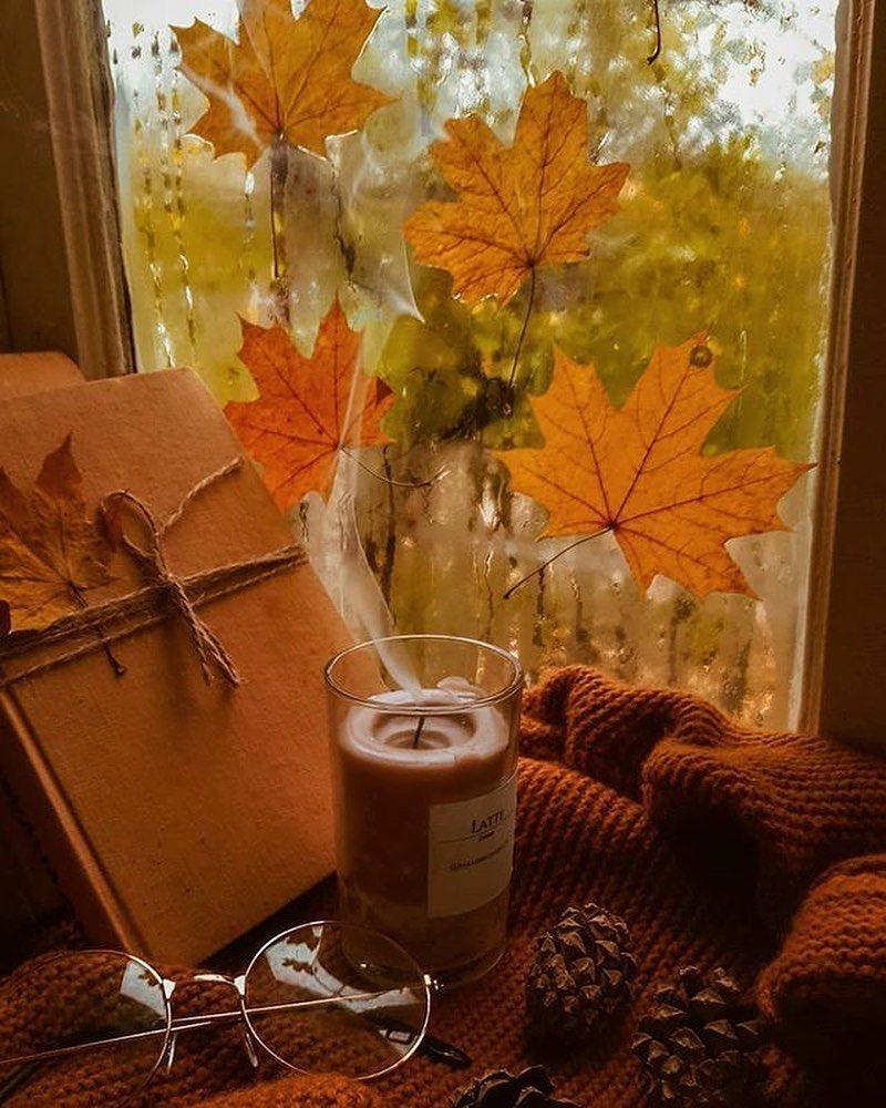 autumn, rain, and autumn sweater image