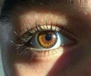 eyes, brown eyes, and eyelashes image