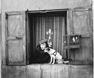 robertocustodioart:  Veronica Compton by Richard Avedon 1950