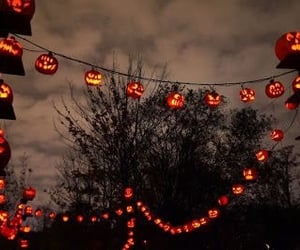Halloween and trees image