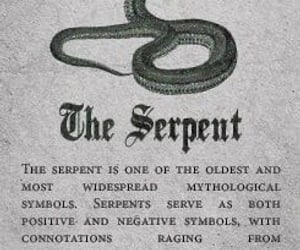 aesthetic, serpent, and snake image