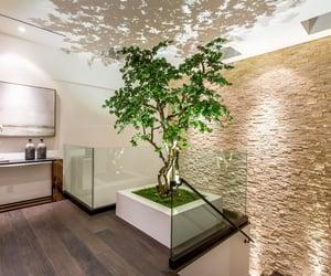 dream home, ntaure, and indoor outdoor image