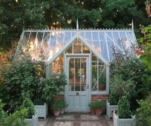 backyard, garden, and gardening image