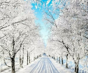 winter, cold, and snow image