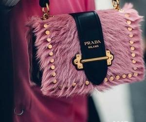 Prada and bag image