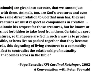 animal rights, benedict, and earth image