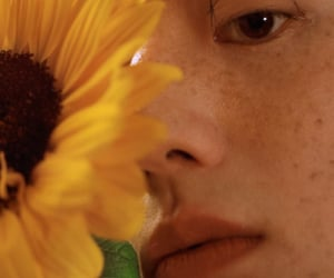 asia, portrait, and sunflower image