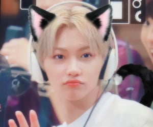 felix, catboy, and skz image