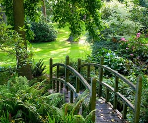 aesthetic, garden, and magic image