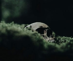green and skull image