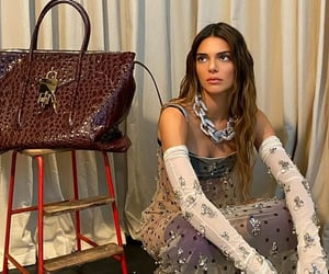 Kendall Jenner shared more shots modeling a sheer gown from Givenchy's latest collection to Instagram.image via dailymail.co.uk