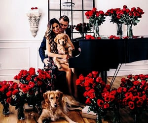 couple, dog, and flowers image