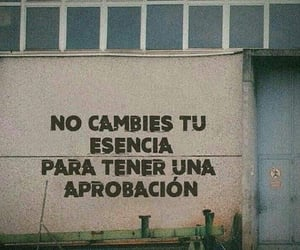 phrases, accion poetica, and frases image