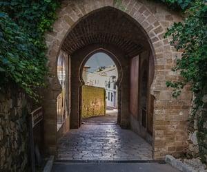 arab, nature, and bricks image