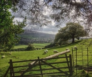 country life, cottagecore, and farm image