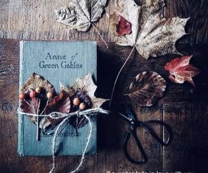 autumn, love, and books image