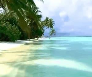 beach, Maldives, and ocean image