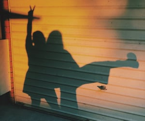 discover, quirky, and shadows image
