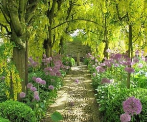 aesthetic, garden, and green image