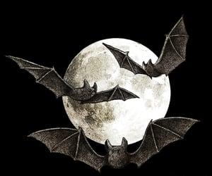 art, autumn, and bats image