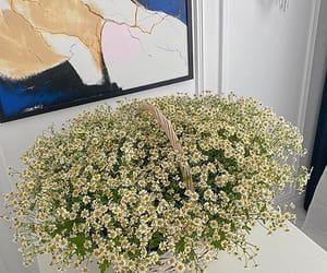 #theparisianchique  via @home.de.fleur