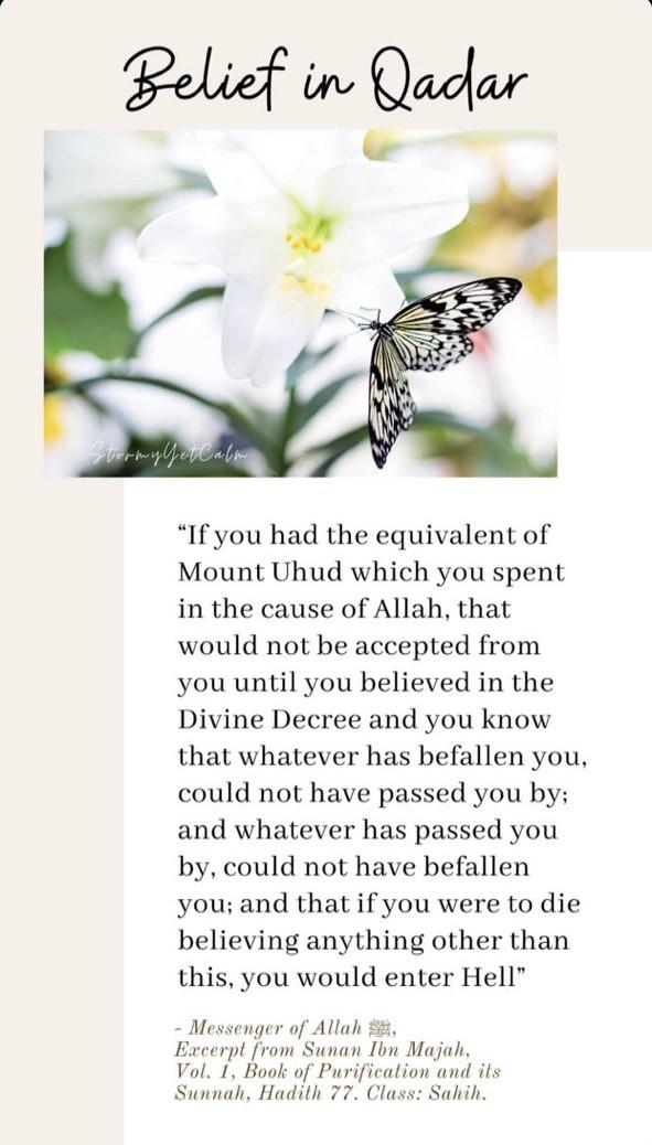 islam, qadr, and his teachings image