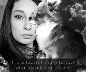 angel, love, and dog image
