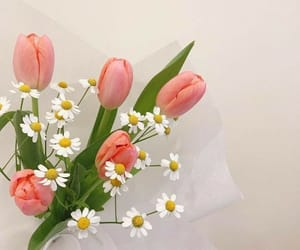 bouquet, flowers, and soft image