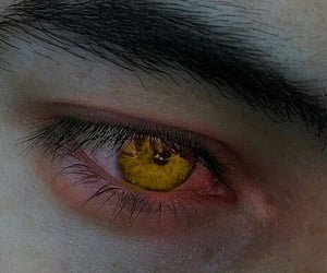 golden, yellow eyes, and red rising image