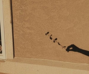 aesthetic, brown, and shadow image