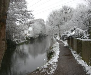 cold, snow, and path image