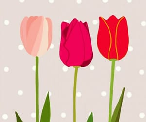 flores, flowers, and tulips image