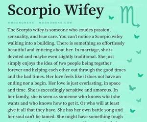 scorpio and scorpio wife image