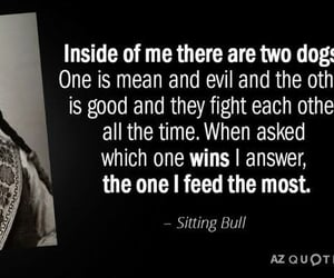 native american, quotes, and sitting bull image
